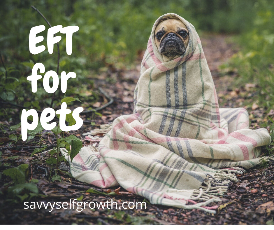 EFT for Pets, aka Surrogate Tapping